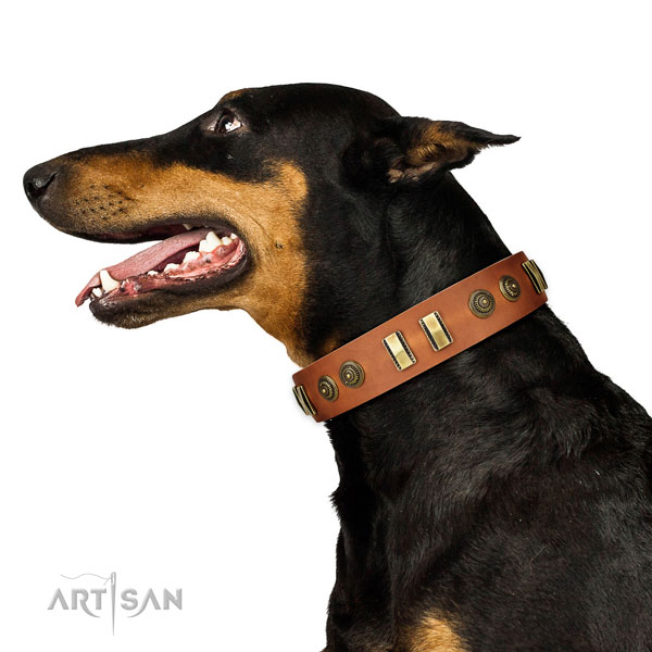 Corrosion resistant buckle on leather dog collar for comfy wearing