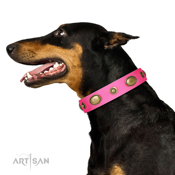 Easy wearing dog collar of genuine leather with significant studs