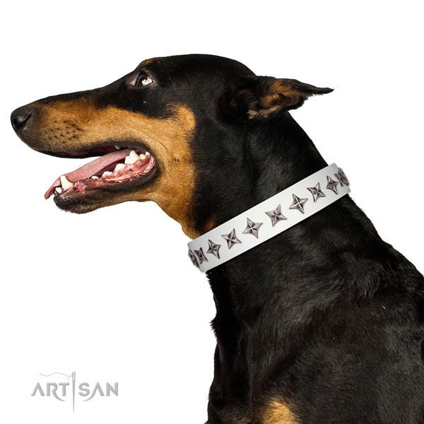 Top quality leather dog collar with extraordinary embellishments