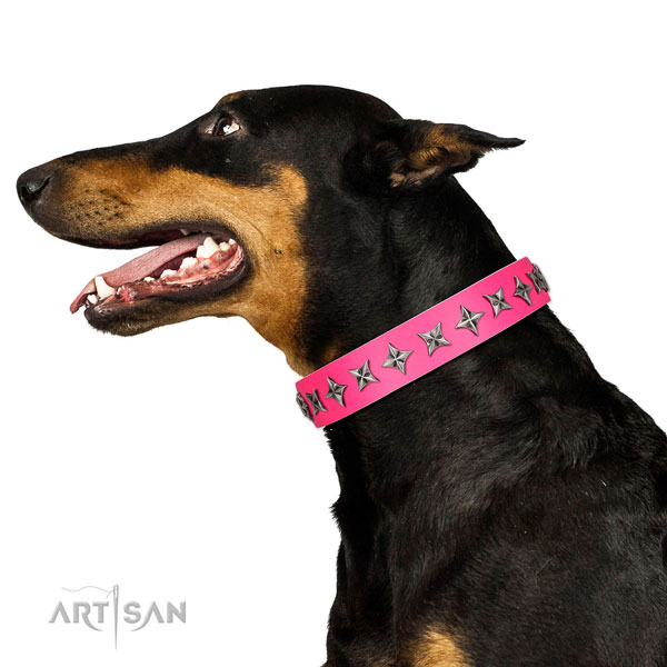 Durable genuine leather dog collar with inimitable embellishments