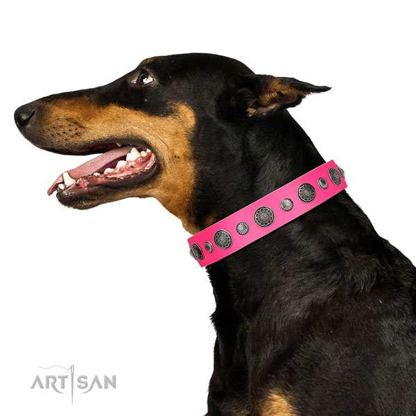Easy wearing natural leather dog collar with rust resistant fittings