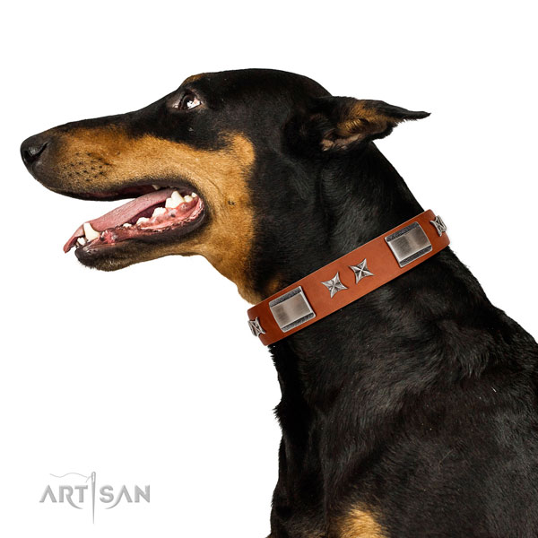 Daily use gentle to touch full grain genuine leather dog collar with embellishments