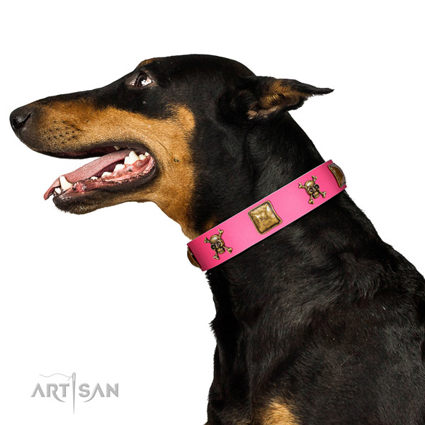 Full grain leather dog collar with inimitable decorations for everyday walking