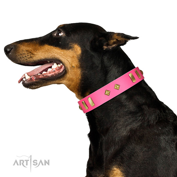 Genuine leather dog collar with fashionable decorations for daily walking