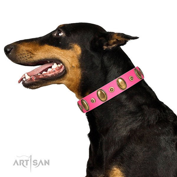 Corrosion proof adornments on soft natural leather dog collar