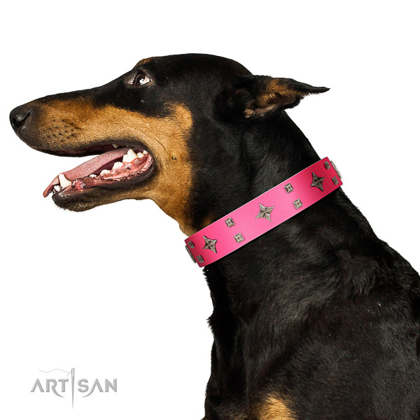 Significant full grain leather collar with embellishments for your pet