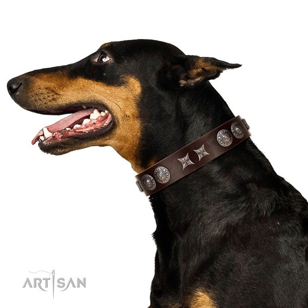 Handy use flexible leather dog collar with adornments