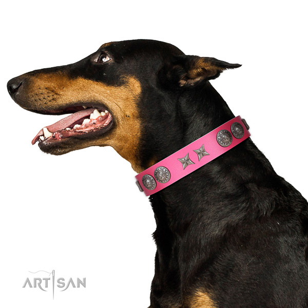 Full grain natural leather dog collar of flexible material with extraordinary decorations