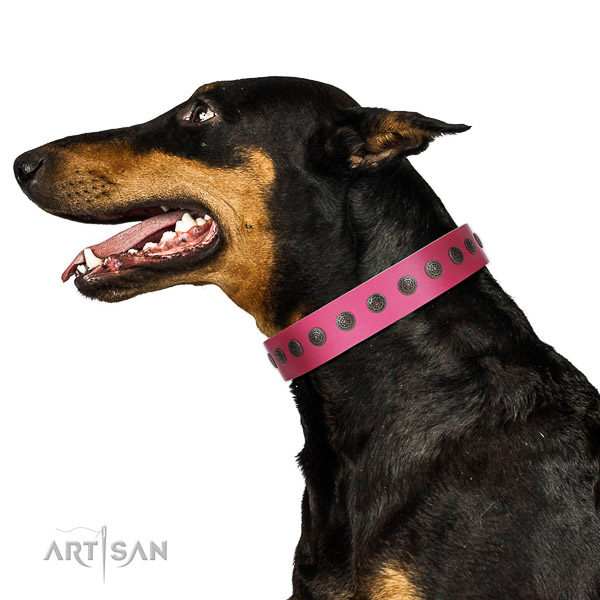 Inimitable leather collar for stylish walking your dog
