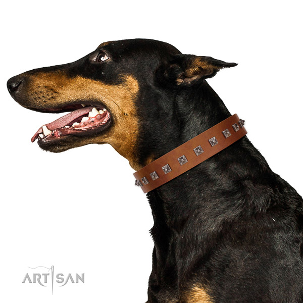 Stylish design adorned natural leather dog collar