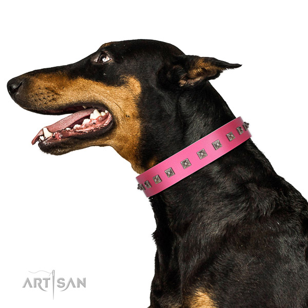 Significant studded full grain natural leather dog collar