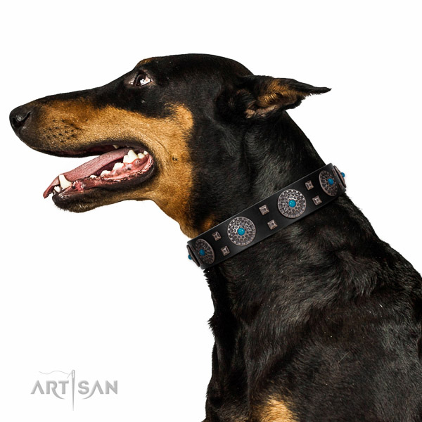 Comfy wearing natural leather dog collar with fashionable adornments