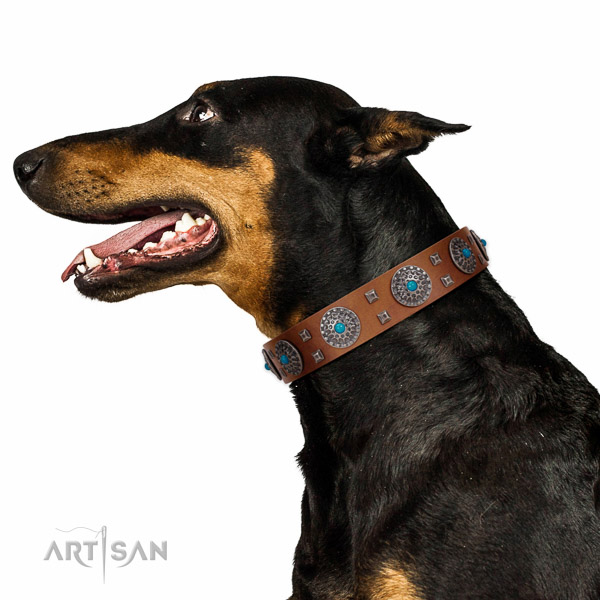 Comfy wearing natural leather dog collar with significant decorations