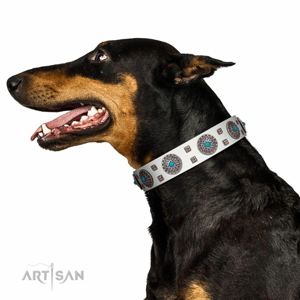 Comfortable wearing natural leather dog collar with impressive studs
