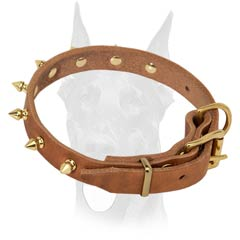 Attractive collar with brass spikes