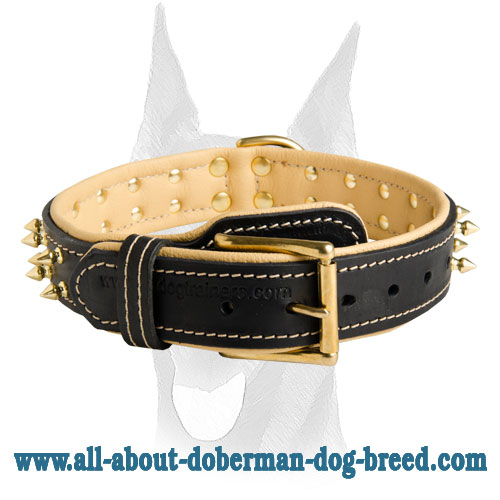 Strong durable leather collar