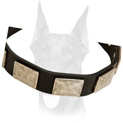 Walking leather Doberman collar