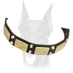 Leather collar with massive plates