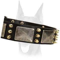 Fancy style leather collar
