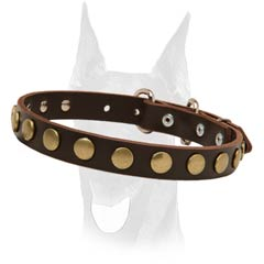 Fancy looking leather collar