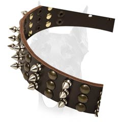 Adjustable leather collar