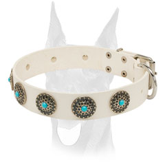 Attractive blue stones for Doberman collar