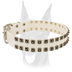 Nickel plated hardware for Doberman collar