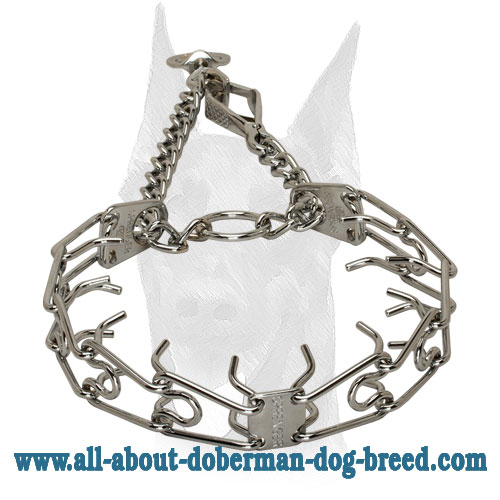 Pinch Collar with Quick Release Snap for Doberman