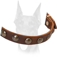 Studded leather Doberman collar