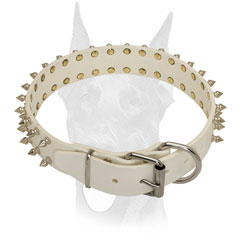 Strong white leather Doberman collar with 2 rows of symmetrical spikes