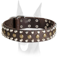 Leather Doberman collar with studs