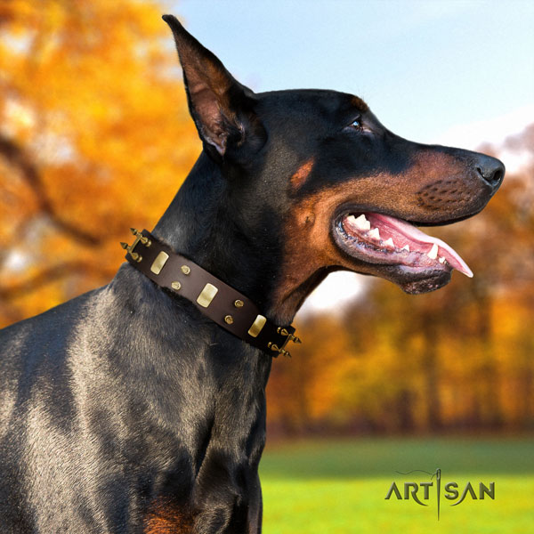Doberman full grain natural leather dog collar with adornments for your stylish doggie