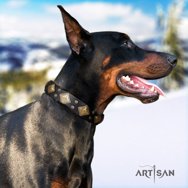 Doberman natural genuine leather dog collar with adornments for your stylish pet