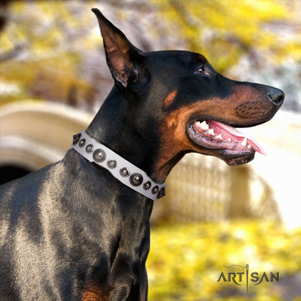 Doberman full grain genuine leather dog collar with embellishments for your lovely pet