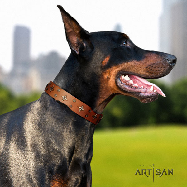 Doberman leather dog collar with decorations for your handsome pet