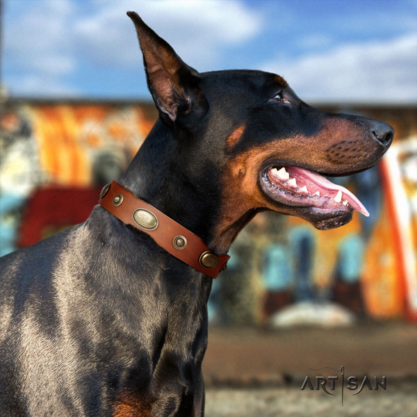 Doberman easy to adjust full grain natural leather collar with adornments for your dog