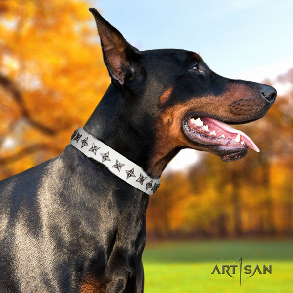 Doberman designer genuine leather collar with adornments for your canine