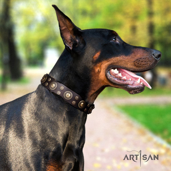 Doberman full grain natural leather dog collar with adornments for your impressive canine