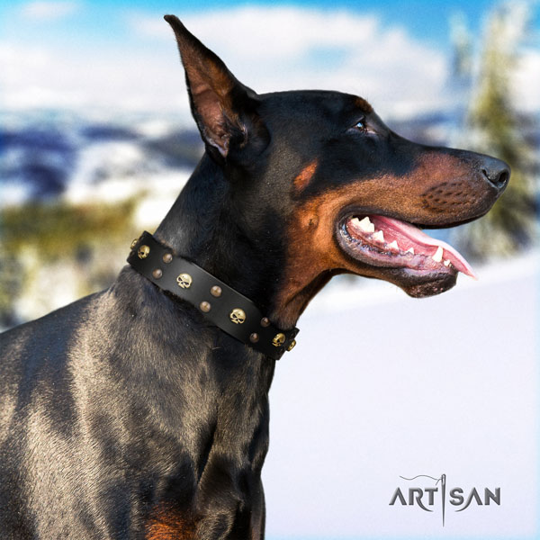 Doberman full grain genuine leather dog collar with studs for your handsome four-legged friend