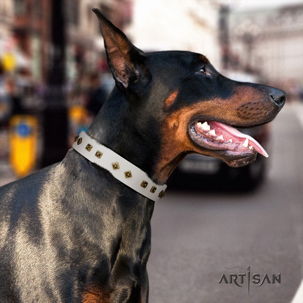 Doberman full grain natural leather dog collar with studs for your attractive four-legged friend