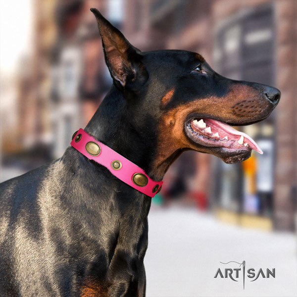 Doberman unusual full grain leather collar with adornments for your pet