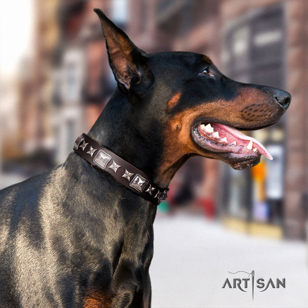 Doberman full grain natural leather dog collar with studs for your handsome four-legged friend