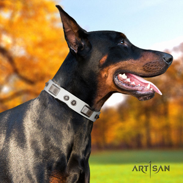 Doberman incredible full grain natural leather collar with embellishments for your dog