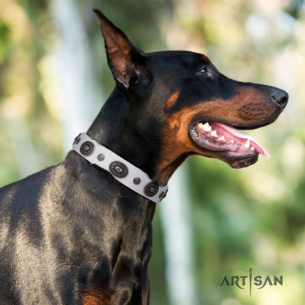 Doberman genuine leather dog collar with adornments for your impressive canine