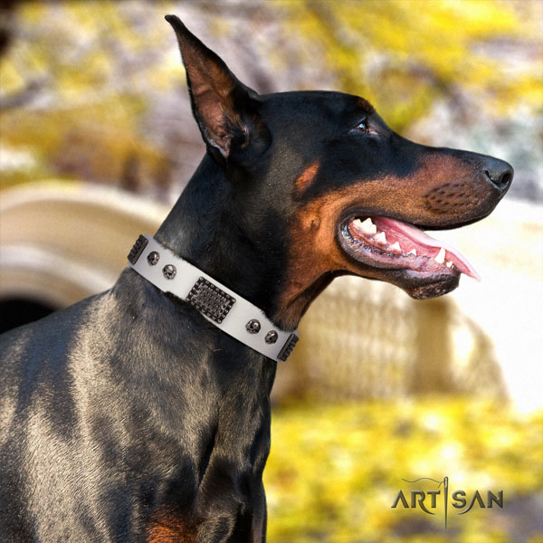 Doberman exquisite genuine leather collar with adornments for your canine