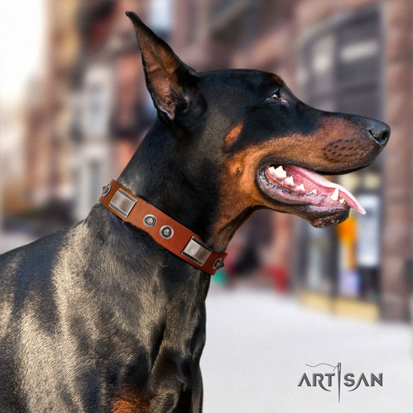 Doberman best quality natural genuine leather collar with decorations for your dog