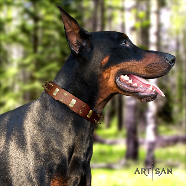 Doberman genuine leather dog collar with studs for your impressive pet