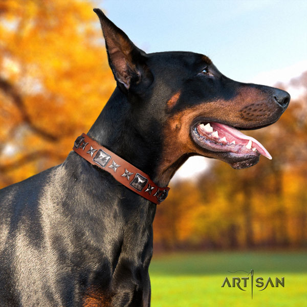 Doberman genuine leather dog collar with adornments for your lovely canine