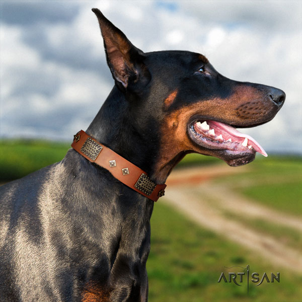 Doberman unique natural genuine leather collar with embellishments for your pet