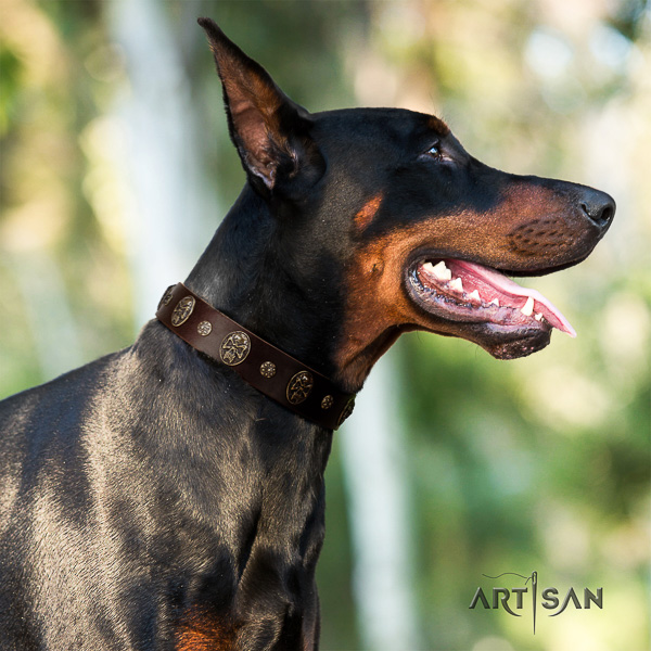 Doberman comfy wearing full grain natural leather collar with embellishments for your four-legged friend